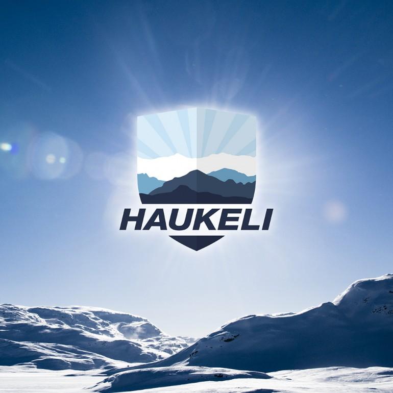 haukelifjell logo på fjell liten